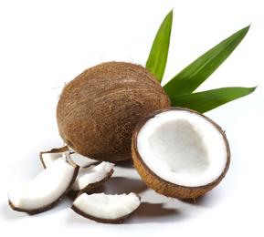 Kokosnuss Alzheimer Heilung mit Kokosnussöl?
